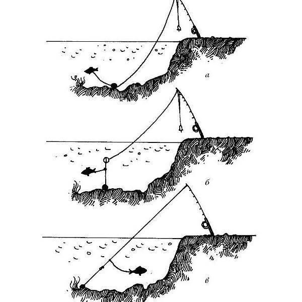 Ловля судака ночью: особенности, где ловить и на что