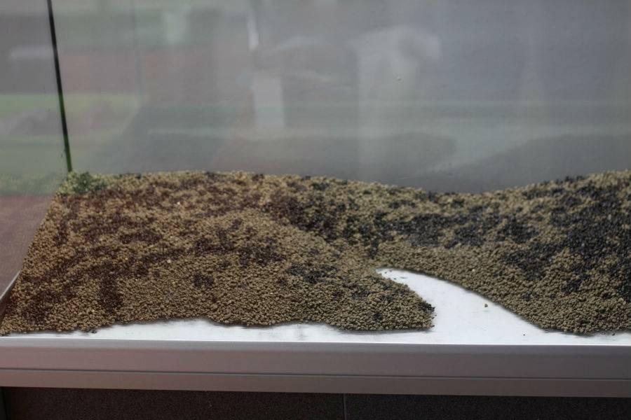 Питательный грунт для аквариума (субстрат, подложка для аквариумных растений): как сделать своими руками, зачем нужен