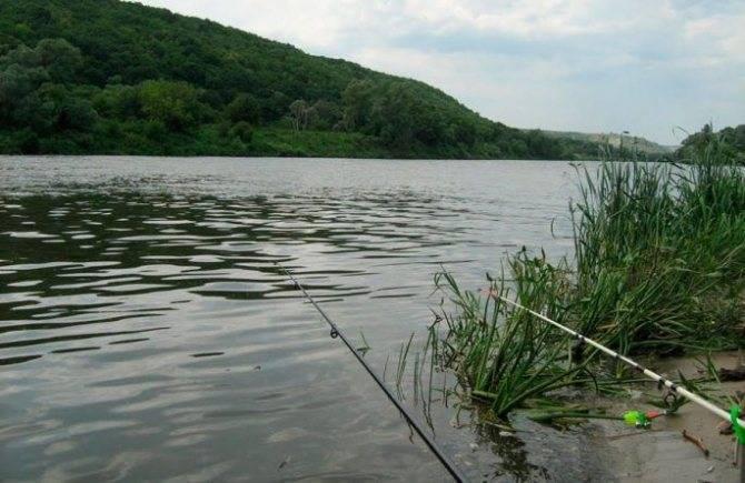 Рыбалка белогорья | карта водоёмов, что и где клюёт. видео обзоры рыбалки