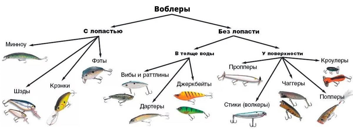 Твичинг для начинающих в рыбалке: что это такое, виды и техника проводки при ловле щуки и судака спиннингом на мелководье