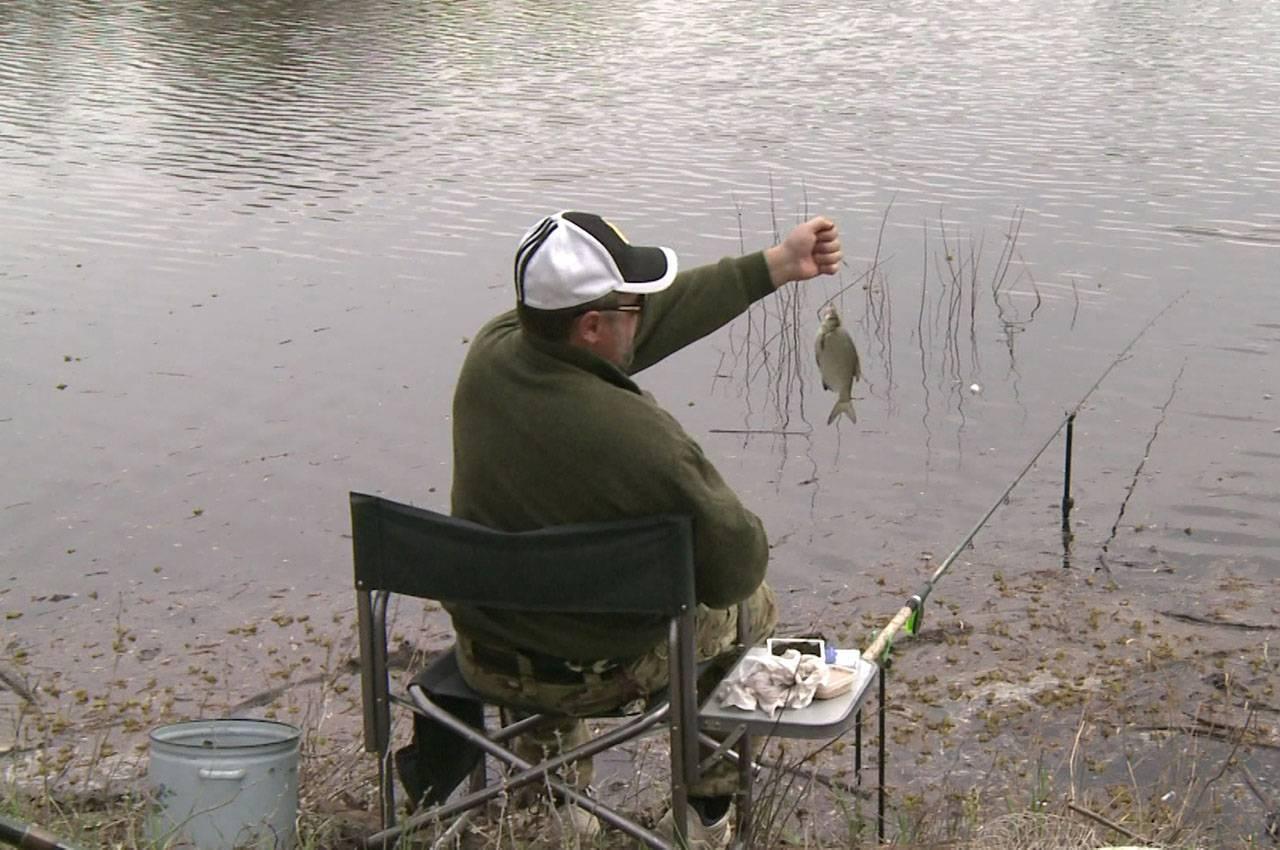 На что ловить подлещика и как правильно ловить осенью - прикормка и приманка