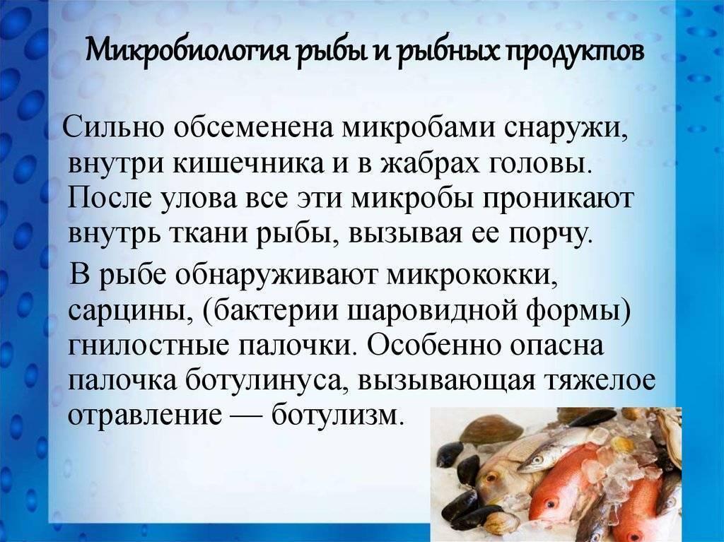 Лечение рыбок солью и как проводить солевые ванны?