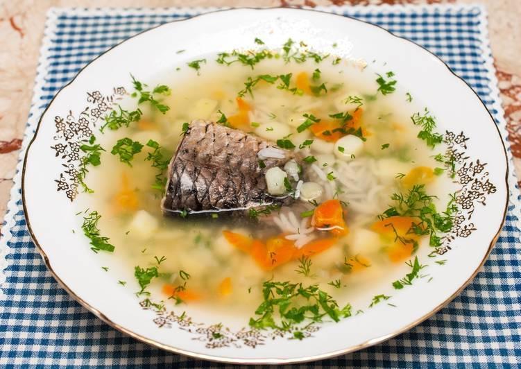 Уха из судака - рецепты приготовления в домашних условиях пошагово с фото