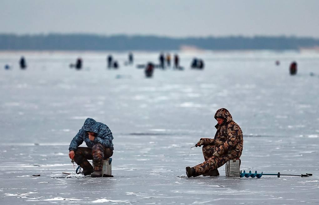 Ловля карася осенью (сентябрь, октябрь, ноябрь) на фидер, поплавочную удочку