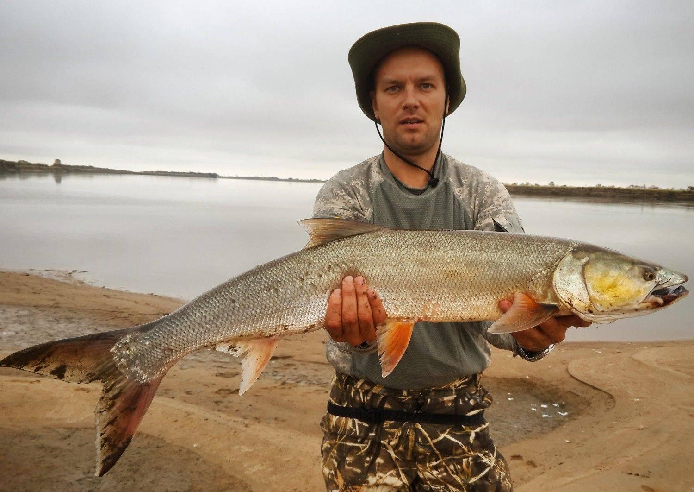 Рыбалка в новосибирской области: лучшие места на карте топ-10