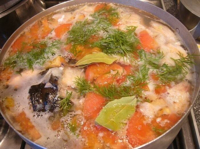 Уха из семги / рыбные супы / tvcook: пошаговые рецепты с фото