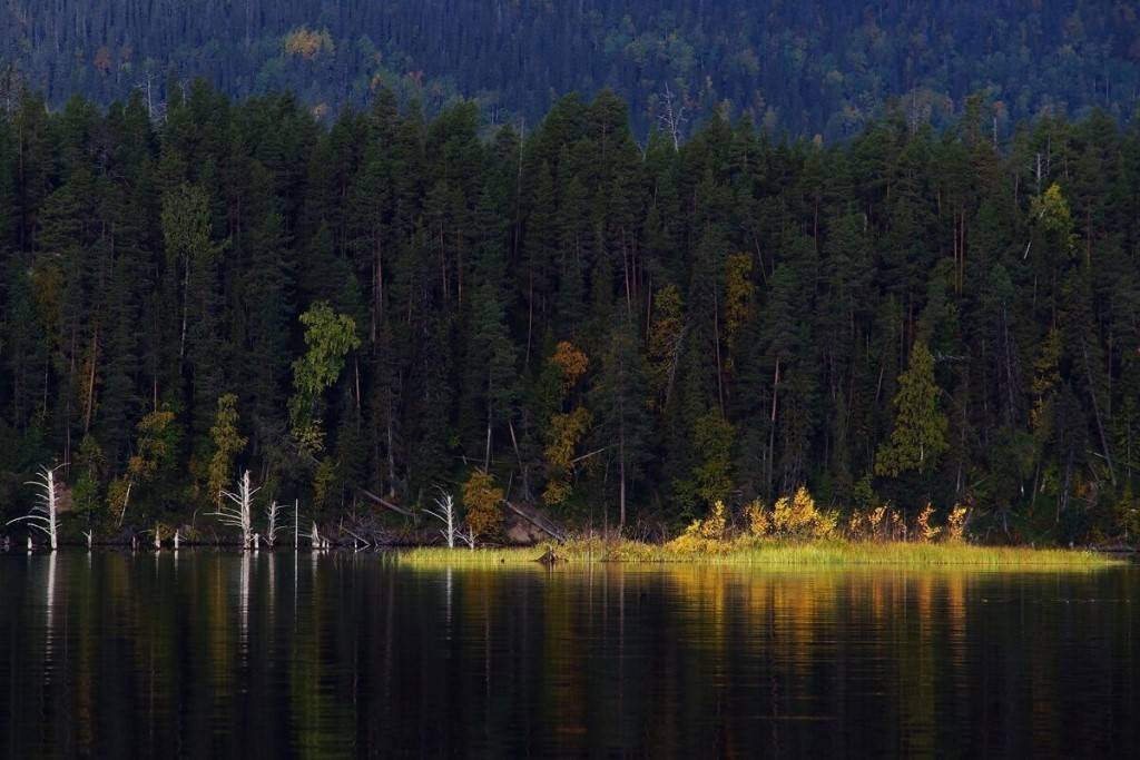 Паанаярви: национальный парк в карелии, официальный сайт заповедника, фото, рыбалка и стоимость,  а также кто обитает в озерах и реках и как снять домик?