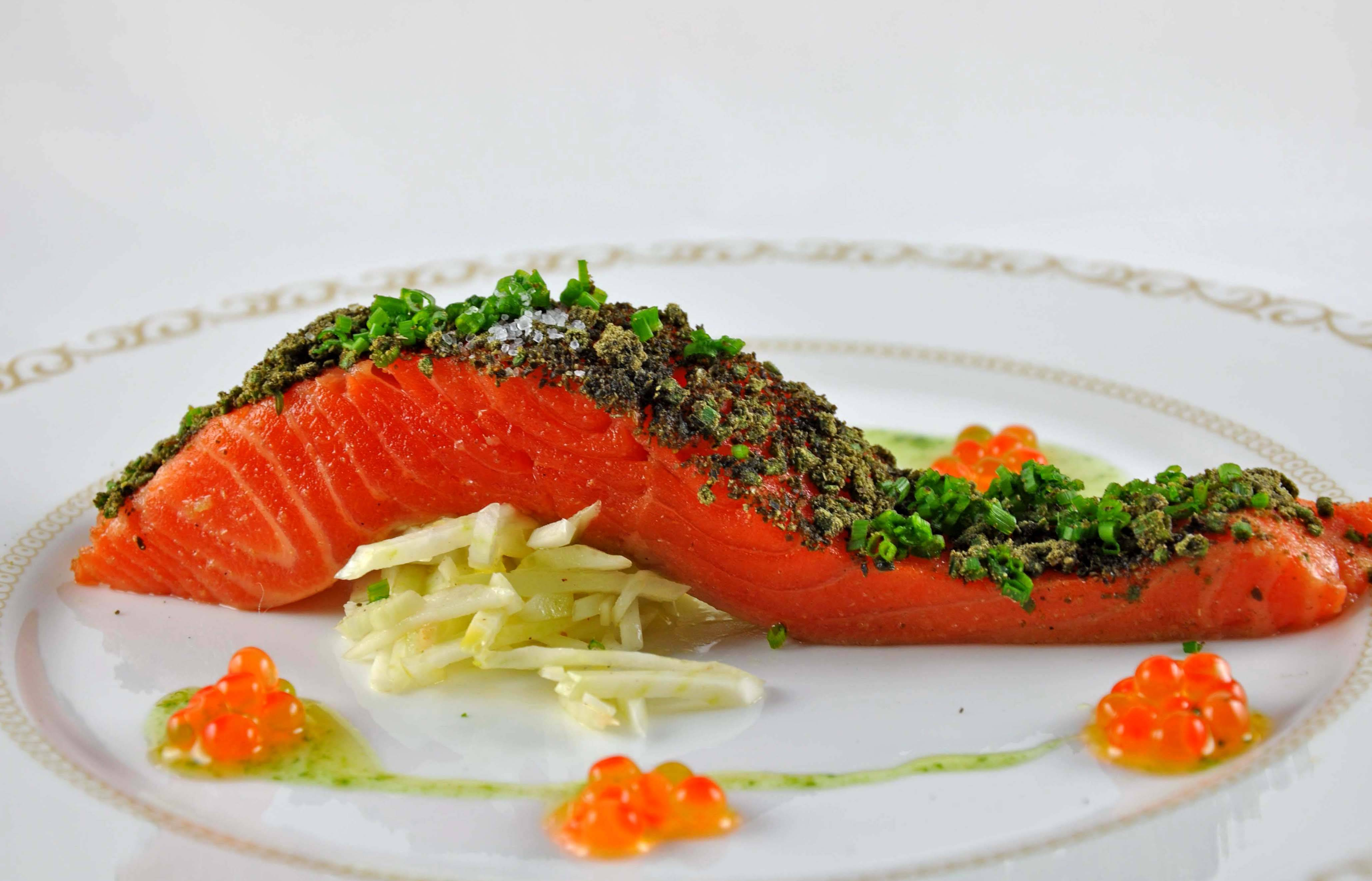 Семга и лосось одно и тоже – тогда в чем разница и как отличить рыбу?