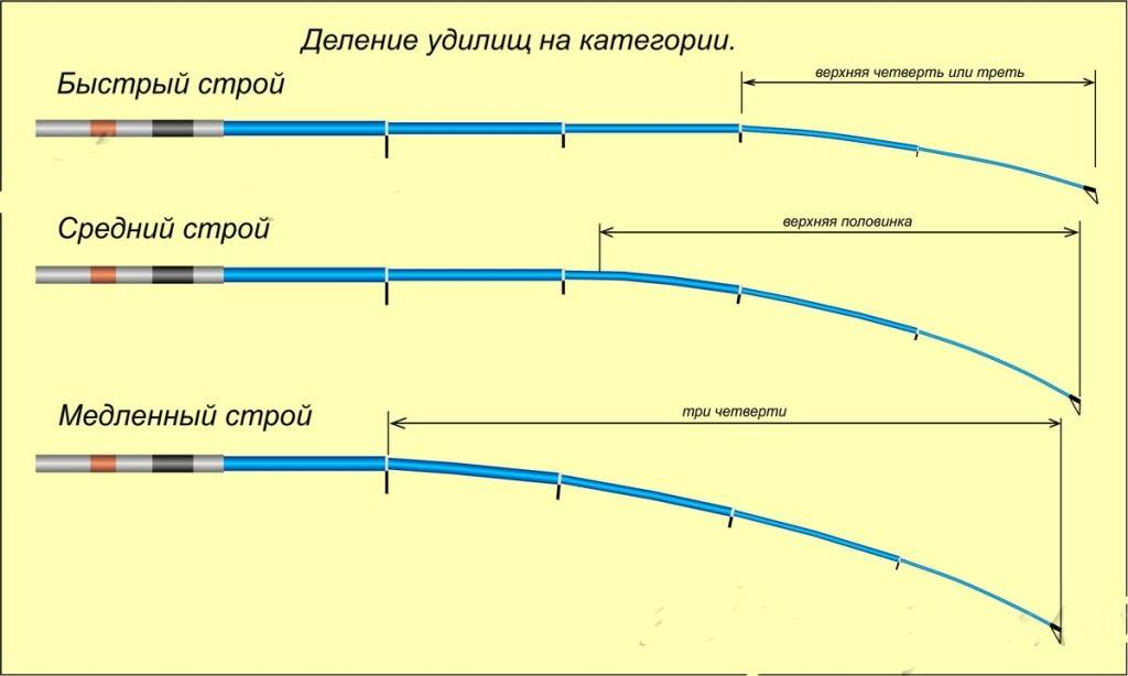 Какой спиннинг лучше - штекерный или телескопический? обзор, сравнение и рейтинг спиннингов