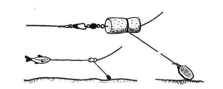 Как ловить судака осенью