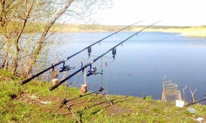 Рыбалка на сазана на ахтубе - разное
