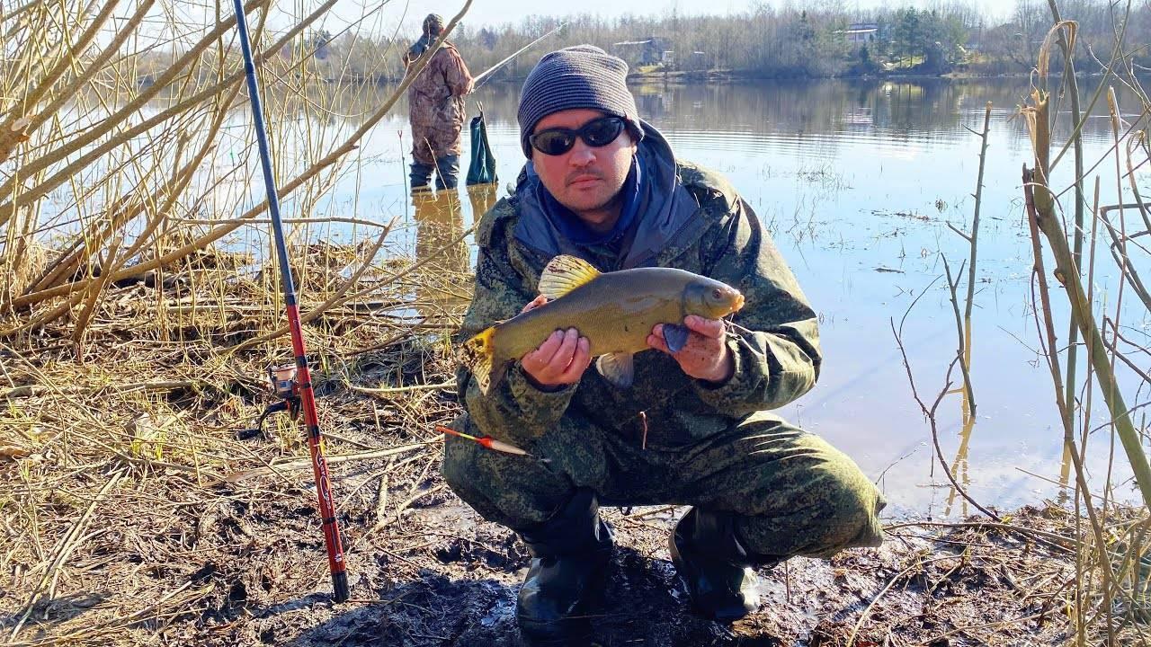 Где сейчас ловят рыбу в ленинградской области   санкт-петербург центр
