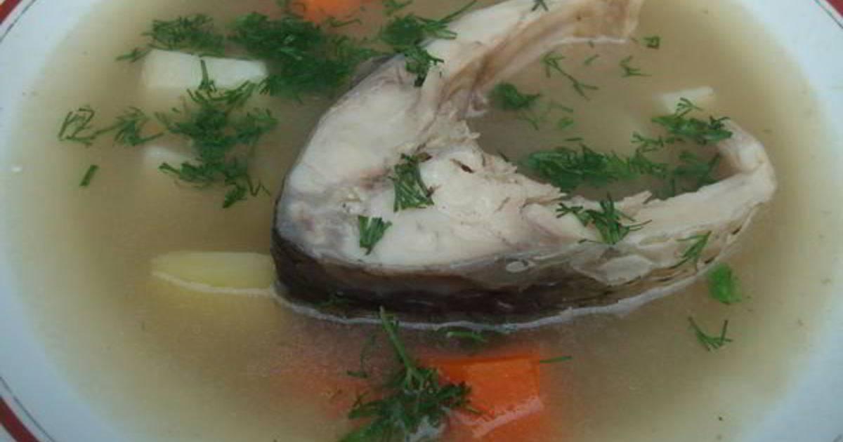 Уха из карпа рецепт с фото пошагово - 1000.menu