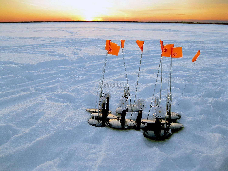 Флажки для зимней рыбалки — выбор снастей, способы ловли хищников и обзор самых эффективных техник (120 фото)
