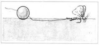 Ловля голавля на поплавочную удочку
