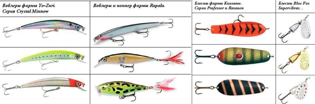 Ловля тайменя - читайте на сatcher.fish