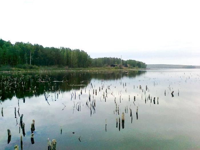 Озеро алабуга в челябинской области. рыбалка, карта, погода, отзывы, базы отдыха, фото, как проехать, отели — туристер.ру