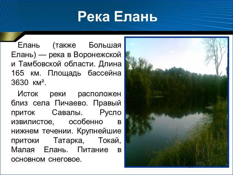 Рыбалка в окрестностях волгограда, рыболовные базы на дону в волгоградской области