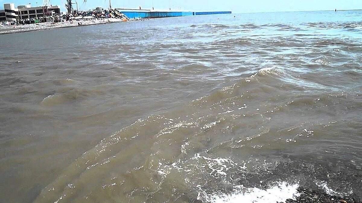 Рыбалка в сочи на море или озере с берега и на лодке