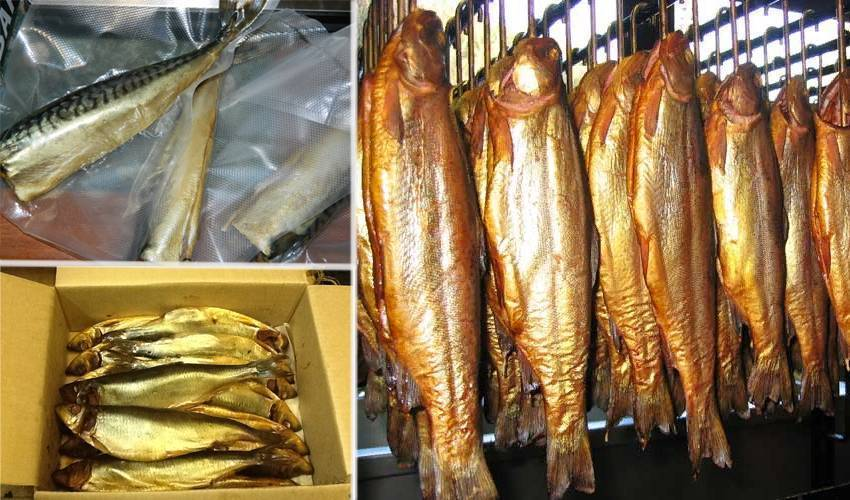 Хранение рыбы: свежая, охлажденная, в холодильнике, без заморозки