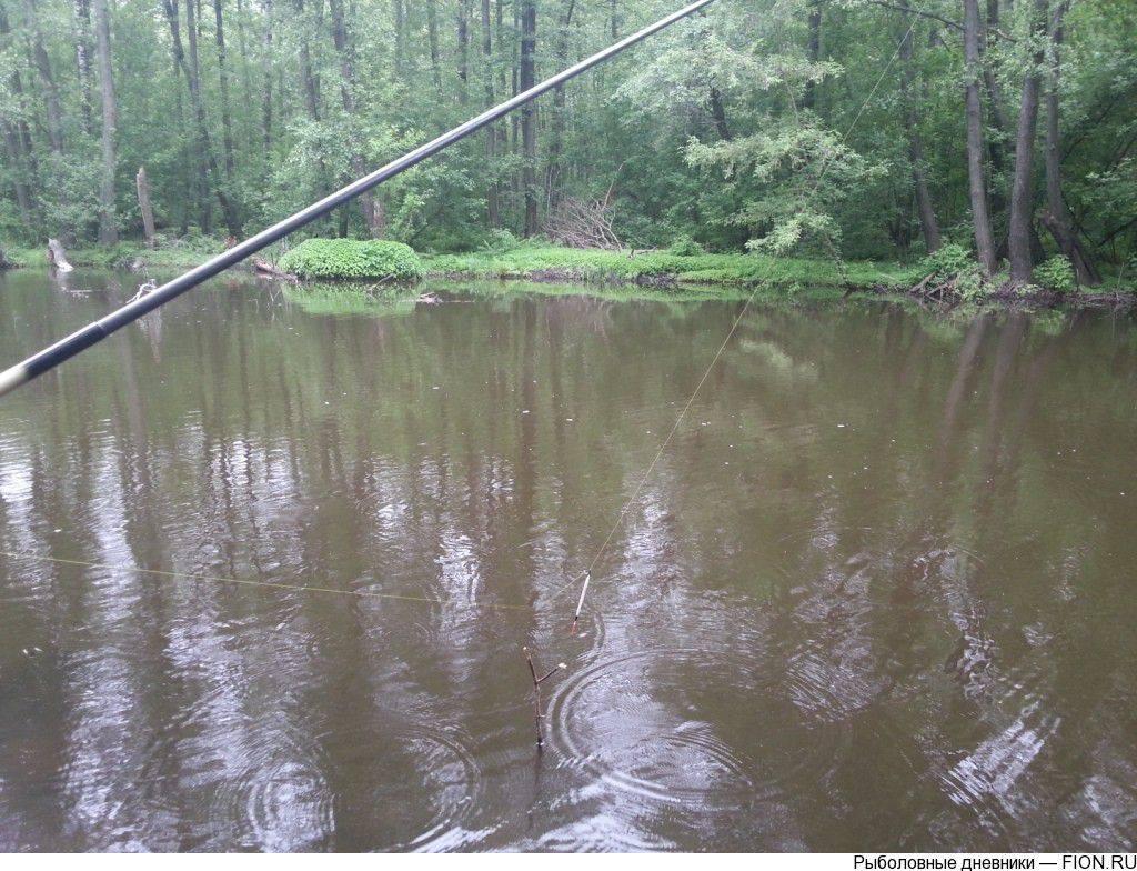 Рыбалка в шатуре — как доехать, ловля летом на муромском, белом, шатурском озере