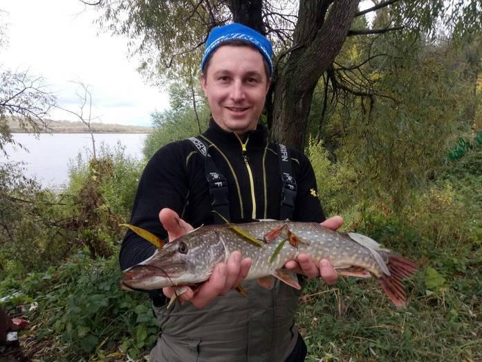 Galavl.ru - рыбинское водохранилище(рыбинка): точки для навигатора, ловля судака, щуки и окуня на спиннинг