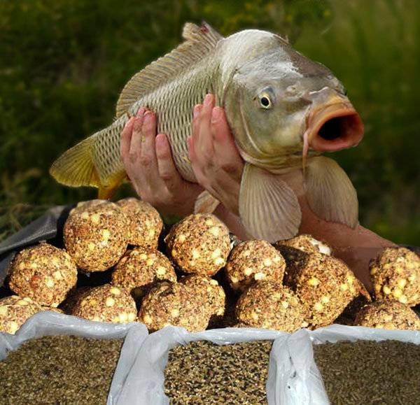 Прикормка для карася – способы приготовления, ингредиенты, цвет, советы профессионала - статьи о рыбалке