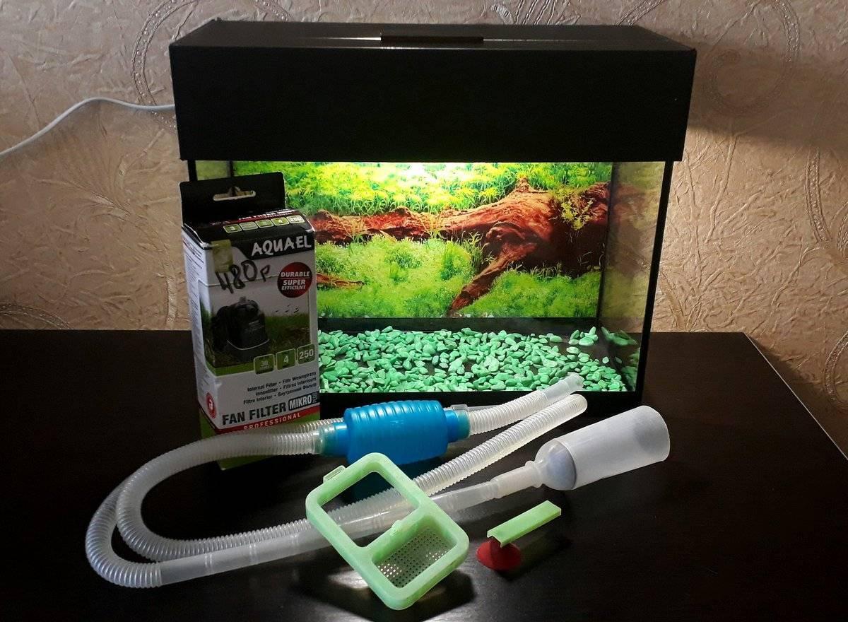 Как правильно чистить аквариум в домашних условиях: стенки, грунт, фильтр