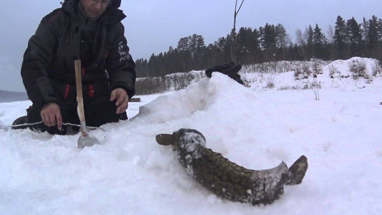 Самые рыбные места в республике саха (якутия) и сезонный запрет