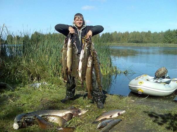 Смоленское водохранилище — место для рыбака