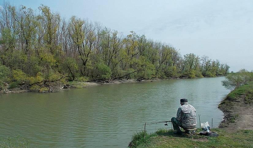 Краснодарское водохранилище — описание, история и интересные факты