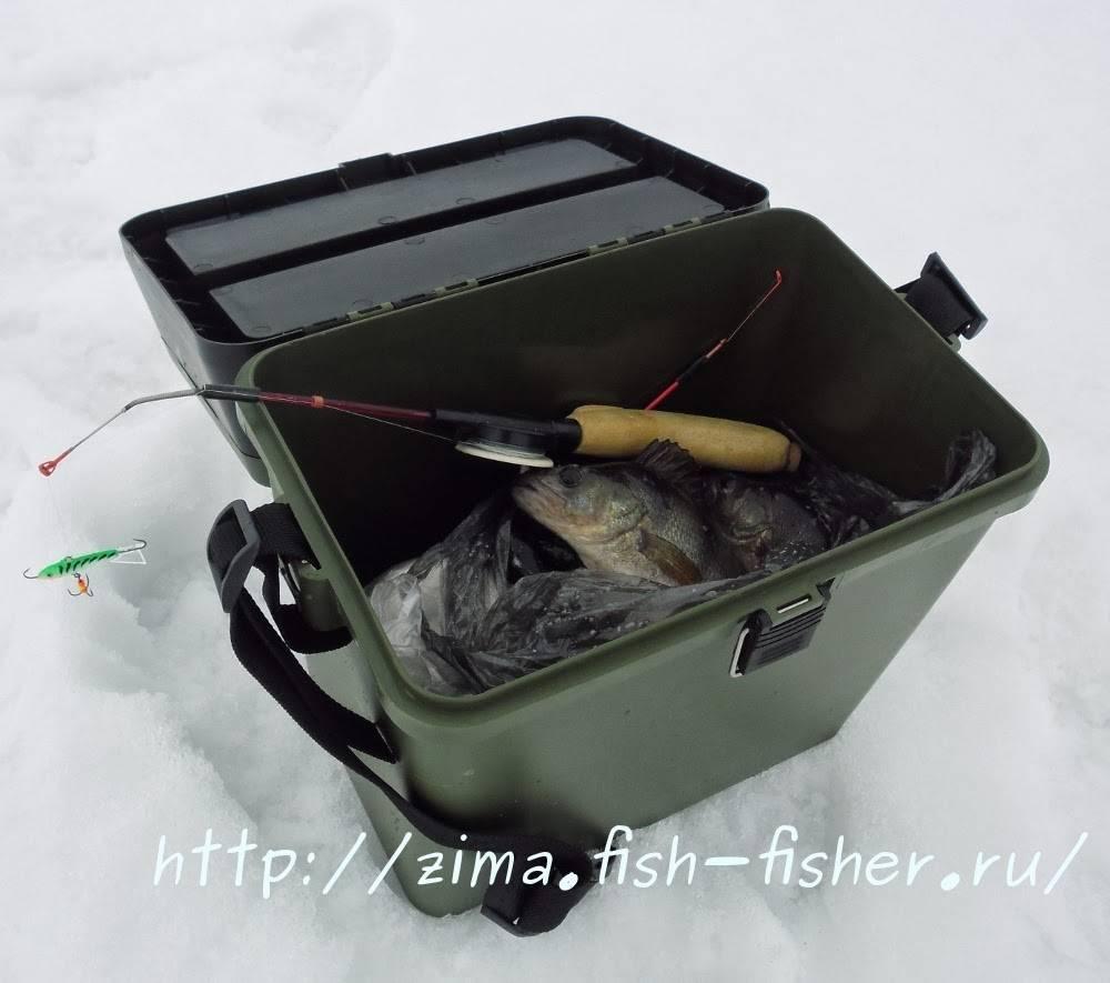 Зимняя рыбалка для начинающих — с чего начать?