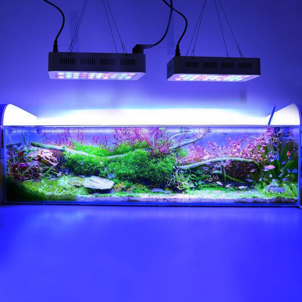 Освещение аквариума своими руками: светодиодный светильник, свет в аквариуме, подсветка для аквариума своими руками, освещение для аквариума своими руками, своими руками, как сделать, прожектор