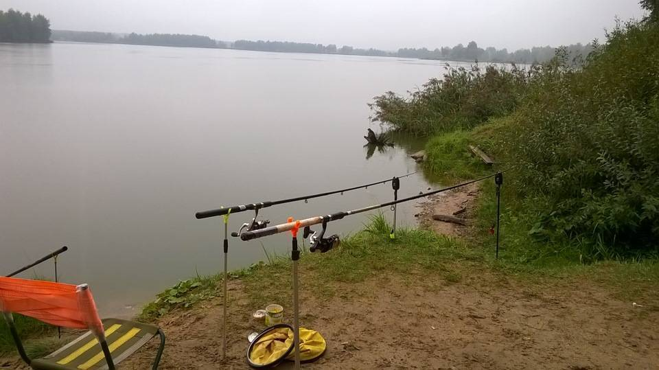 Рыбалка в дятлово клинского рыбхоза — какая рыба водится, цены и дополнительные услуги