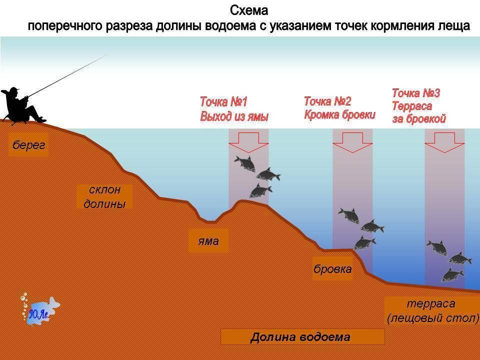 Ловля леща на фидер осенью: прикормка, наживки в сентябре, октябре и ноябре