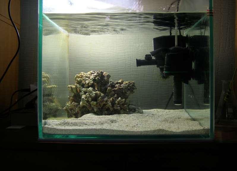 Подготовка воды для аквариума: как быстро приготовить в домашних условиях морскую и обычную жидкость, на что обращать внимание, нужно ли отстаивать