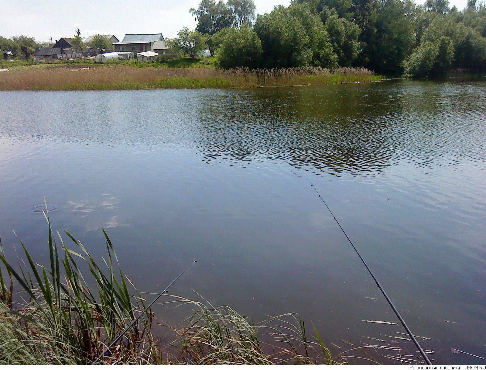 Рыбалка на оке в рязанской области: видео, отчеты, базы, места, волосово, рыбалка в сентябре.