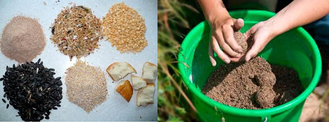Как приготовить прикормку для плотвы своими руками? как приготовить прикормку для плотвы своими руками?