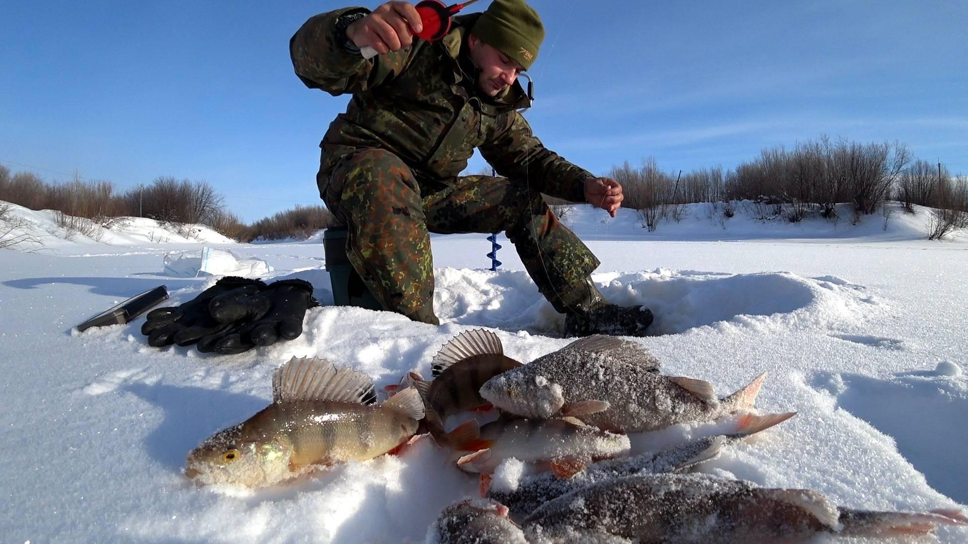 Рыбалка в татарстане зимой и в другие времена года, видео ловли