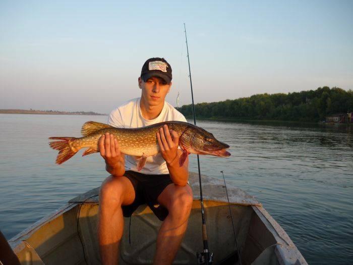 Рыбалка на ахтубе и нижней волге летом   летняя рыбалка в астрахани: в июне, июле и августе   погода и рыболовный календарь: какая рыба ловится