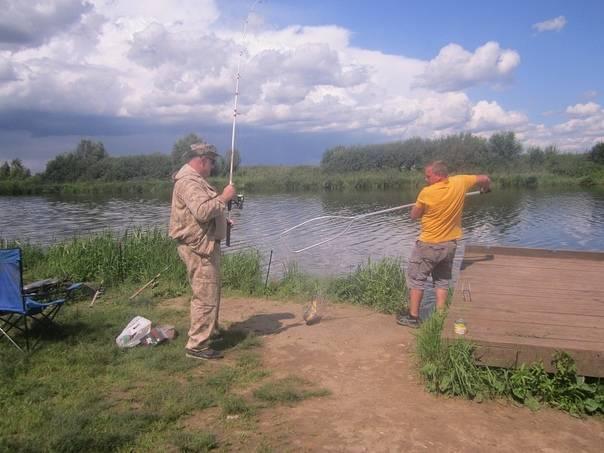 Все о платной рыбалке в стрелецком ручье