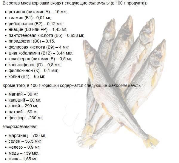 Рыба путассу: польза и вред для организма