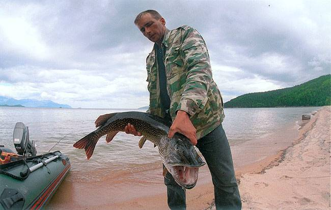 Рыбалка на байкале летом и зимой: особенности и секреты ловли