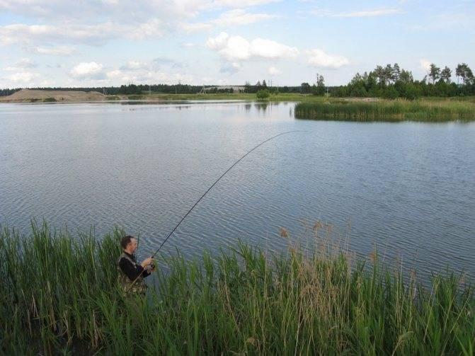 Рыбалка в щёлковском районе (г.о. щёлково)