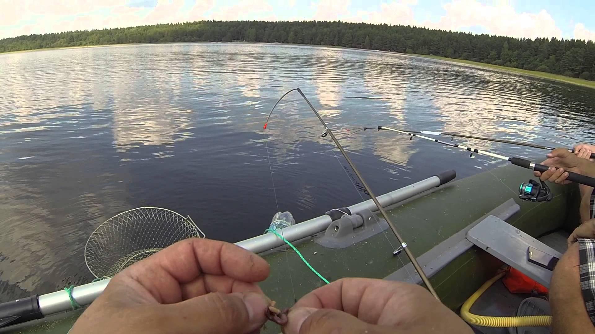 Как сделать ловушку для мелкой рыбы из пластиковых бутылок (малечница, малявочница)