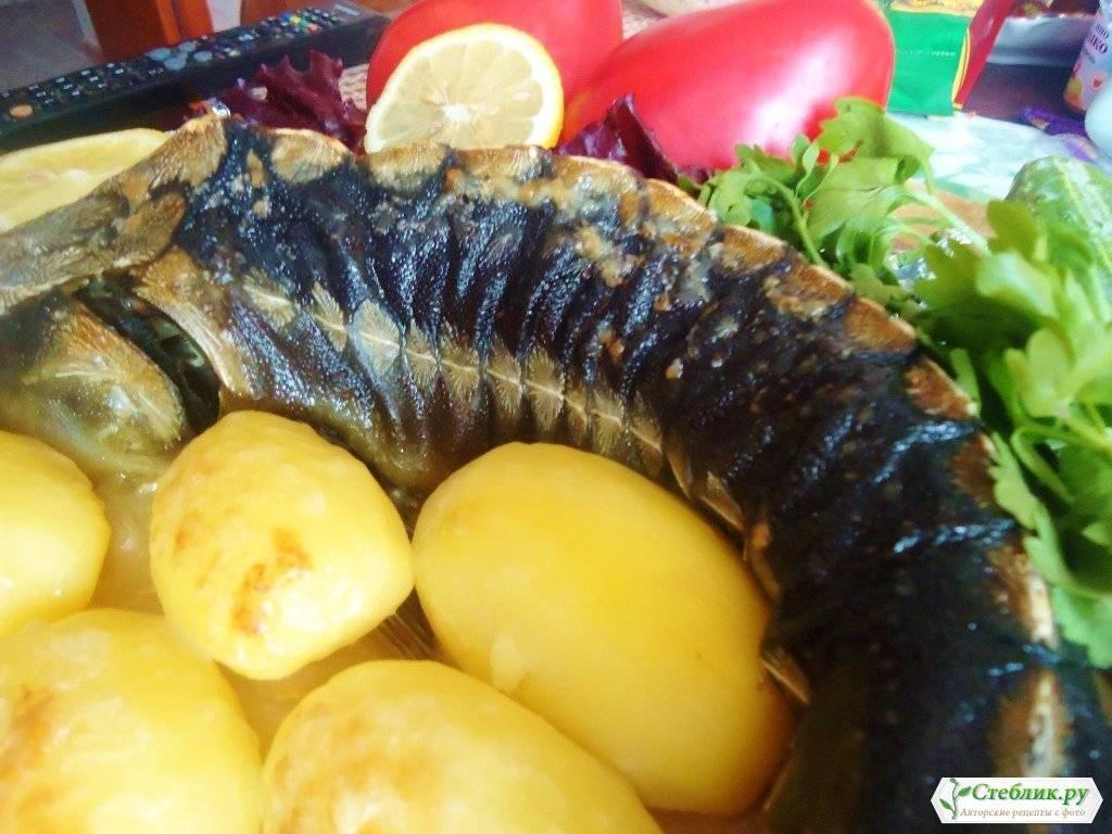 Стерлядь «по-королевски» / блюда из стерляди / tvcook: пошаговые рецепты с фото