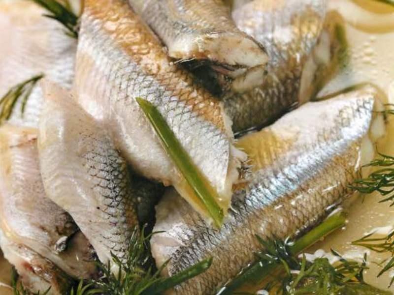 Корюшка: что за рыба, описание, где встречается, виды, ловля