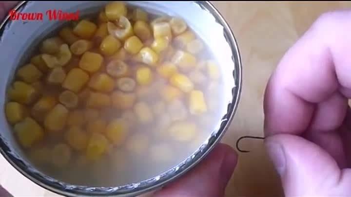 Как насаживать кукурузу на крючок при ловле карпа и карася