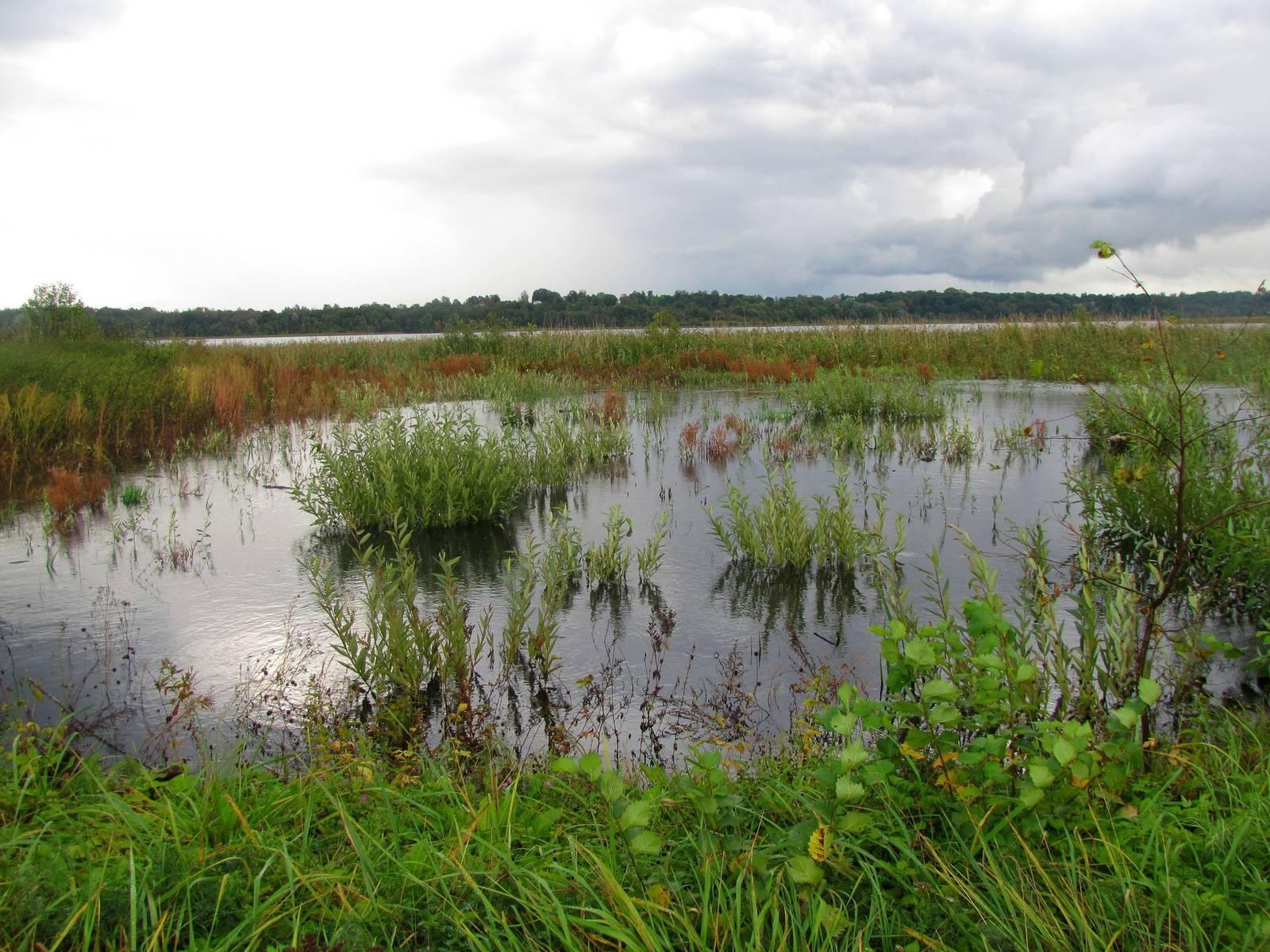 Череменецкое озеро: у истоков истории