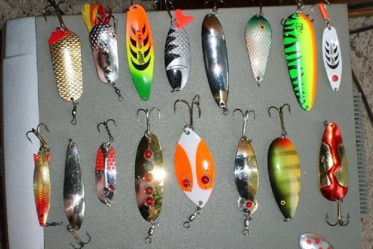 Проводки на щуку: 6 типов проводки для стопроцентного улова